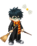 Just Harry Potter