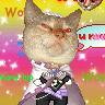 Kupo Moogle's avatar