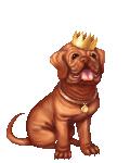 [NPC] King Dog's avatar