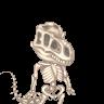 II Vivi Pandah II's avatar