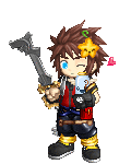 The Hero Sora