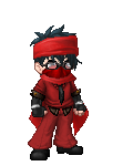 The_Domo_Ninja