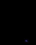 l-WARRIOR SOUL-l's avatar