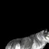 Ookami Chun 's avatar