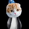 omega pikachu raaa's avatar