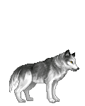 darkages294's avatar