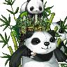 pandaoftheblackflames's avatar