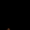 exene's avatar