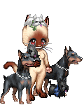mipi7's avatar