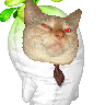 Kiyochu's avatar