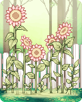 Little ndn 's avatar