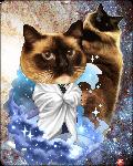 paper denim's avatar