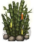 Wish Tree-VQS