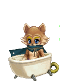 Petbot_model_BCCB