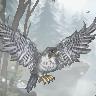 taloton's avatar