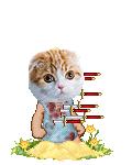 Dippamusk's avatar